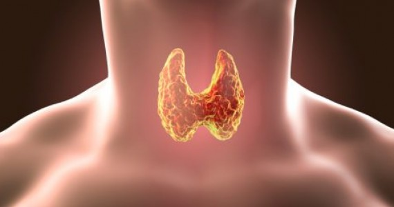 Campania de preventie a bolilor tiroidiene