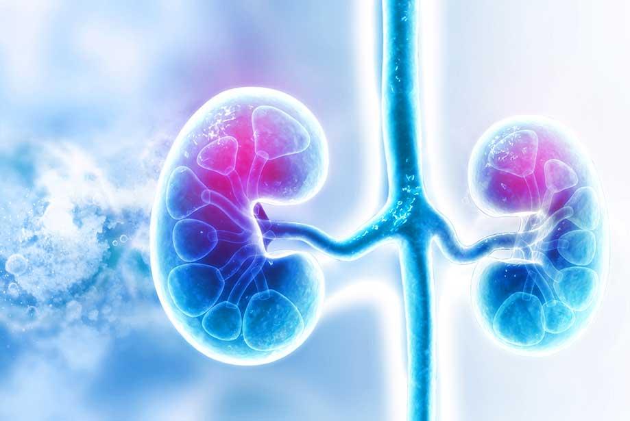 litotritie eswl pietre la rinichi